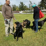 SPCA Paws To The Park Bermuda March 5 2017 (12)