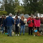 SPCA Paws To The Park Bermuda March 5 2017 (21)