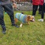 SPCA Paws To The Park Bermuda March 5 2017 (5)