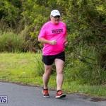 WindReach Walk And Roll Bermuda, March 11 2017-14