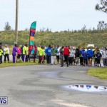 WindReach Walk And Roll Bermuda, March 11 2017-15