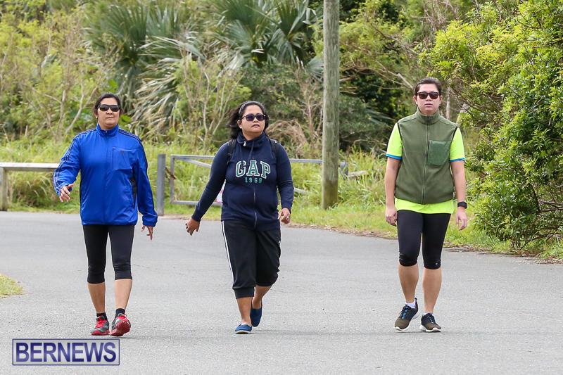 WindReach-Walk-And-Roll-Bermuda-March-11-2017-180