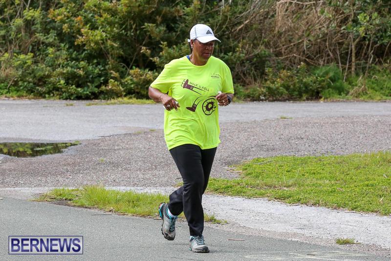 WindReach-Walk-And-Roll-Bermuda-March-11-2017-197