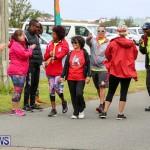 WindReach Walk And Roll Bermuda, March 11 2017-207
