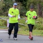 WindReach Walk And Roll Bermuda, March 11 2017-48