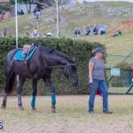 AgShow Day 3 Bermuda April 22 2017 (49)