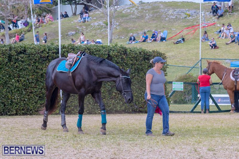 AgShow-Day-3-Bermuda-April-22-2017-49