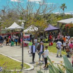 Agshow Bermuda April 21 2017 (11)