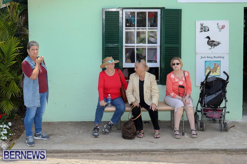 Agshow-Bermuda-April-21-2017-44