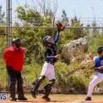 Baseball Bermuda, April 22 2017-43