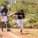 Baseball Bermuda, April 22 2017-59