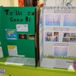 Bermuda Institute Science Fair, April 5 2017-10