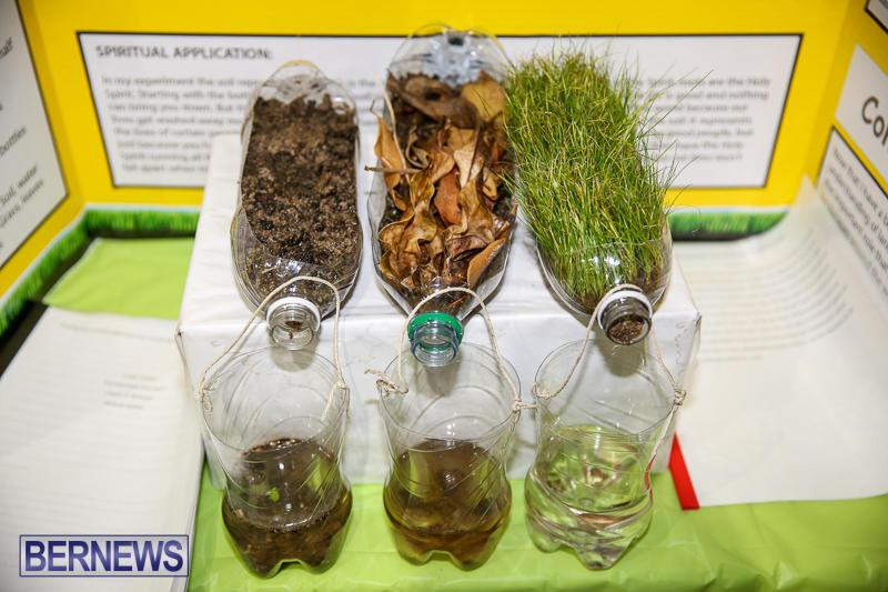 Bermuda-Institute-Science-Fair-April-5-2017-14