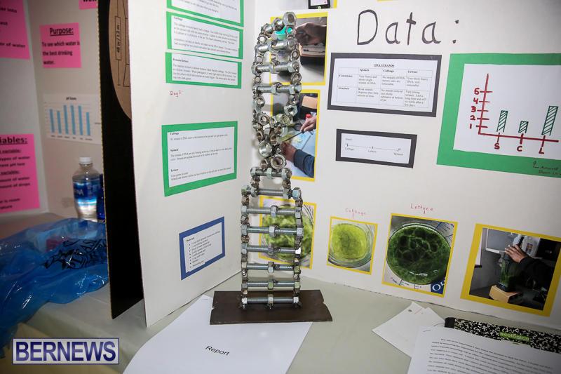 Bermuda-Institute-Science-Fair-April-5-2017-15