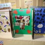 Bermuda Institute Science Fair, April 5 2017-20