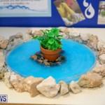 Bermuda Institute Science Fair, April 5 2017-22
