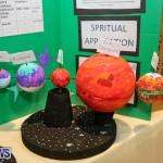 Bermuda Institute Science Fair, April 5 2017-35