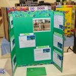 Bermuda Institute Science Fair, April 5 2017-49