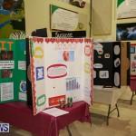 Bermuda Institute Science Fair, April 5 2017-55