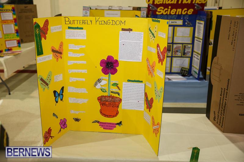 Bermuda-Institute-Science-Fair-April-5-2017-56