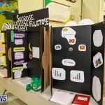 Bermuda Institute Science Fair, April 5 2017-59