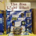 Bermuda Institute Science Fair, April 5 2017-60
