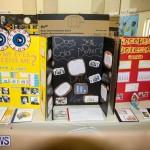 Bermuda Institute Science Fair, April 5 2017-65