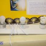 Bermuda Institute Science Fair, April 5 2017-67