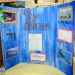 Bermuda Institute Science Fair, April 5 2017-73