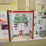Bermuda Institute Science Fair, April 5 2017-83