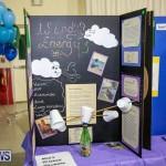Bermuda Institute Science Fair, April 5 2017-97