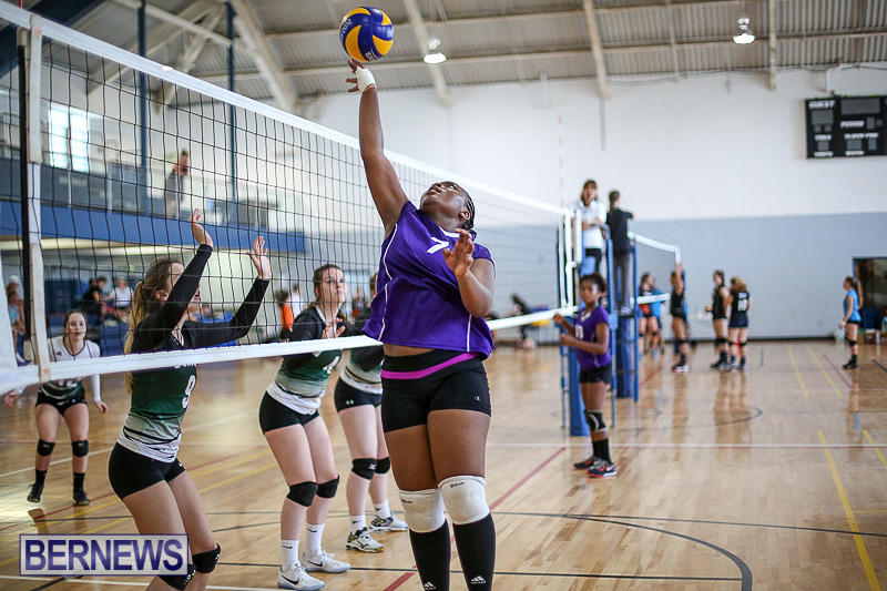 Bermuda-Open-Volleyball-Tournament-April-29-2017-11