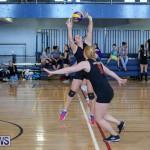 Bermuda Open Volleyball Tournament, April 29 2017-113