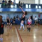 Bermuda Open Volleyball Tournament, April 29 2017-126
