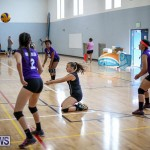 Bermuda Open Volleyball Tournament, April 29 2017-13