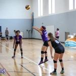 Bermuda Open Volleyball Tournament, April 29 2017-15