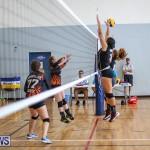 Bermuda Open Volleyball Tournament, April 29 2017-26