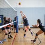 Bermuda Open Volleyball Tournament, April 29 2017-28