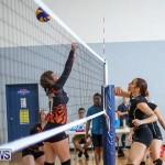 Bermuda Open Volleyball Tournament, April 29 2017-38