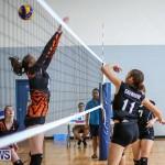 Bermuda Open Volleyball Tournament, April 29 2017-55