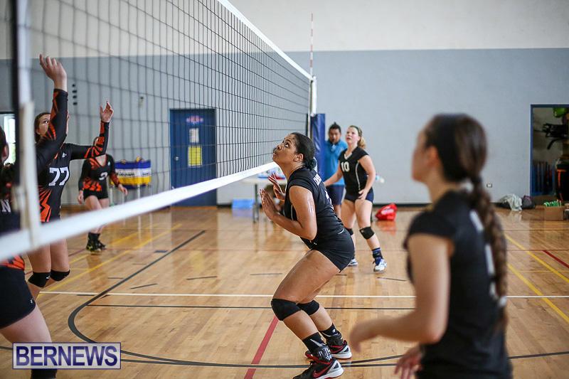 Bermuda-Open-Volleyball-Tournament-April-29-2017-67