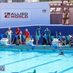 Bermuda Regional ROV Challenge, April 22 2017-10