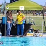 Bermuda Regional ROV Challenge, April 22 2017-19