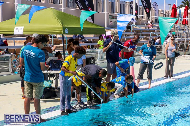 Bermuda-Regional-ROV-Challenge-April-22-2017-66