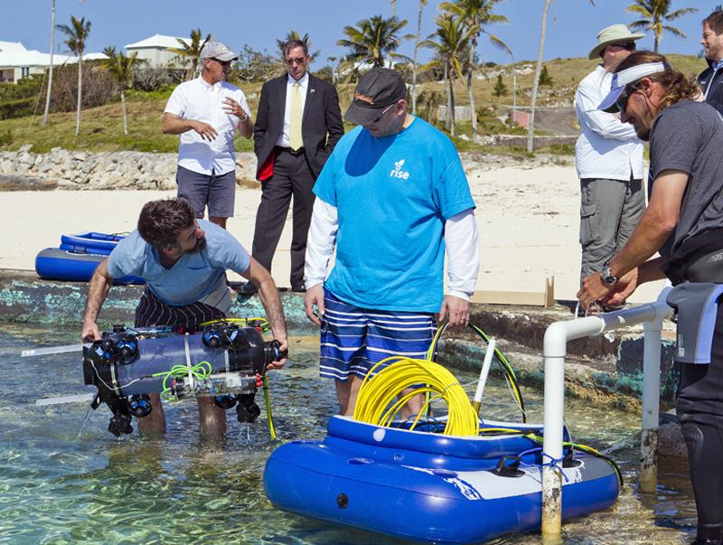 Guardian LF1 Lionfish Bermuda April 18 2017 (5)