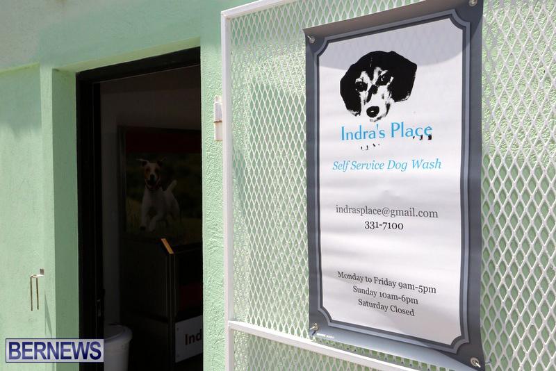 Indras Place Dog Wash Bermuda April 2017 (5)