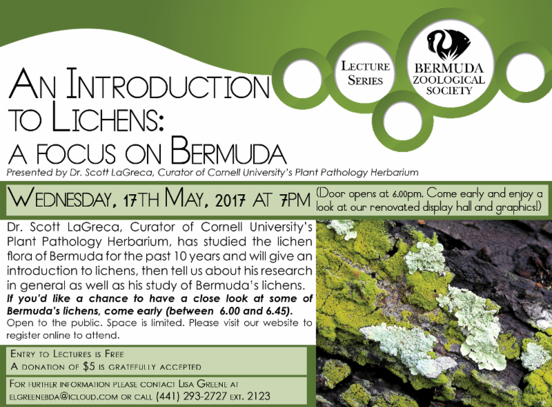 An Introduction to Lichens Bermuda May 2017