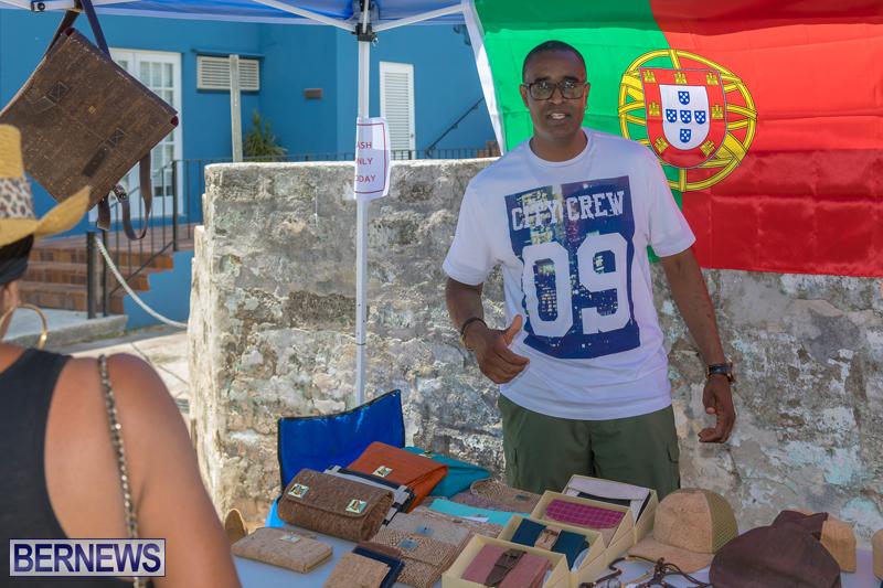 Art-Walk-Bermuda-May-27-2017-18