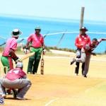 BCB Twenty20 Cricket Bermuda May 21 2017 (15)