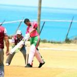 BCB Twenty20 Cricket Bermuda May 21 2017 (18)